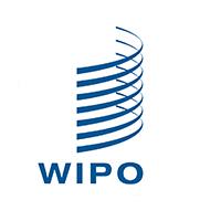 WIPO专利*全球